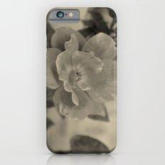 Classic Beauty Slim Case iPhone 6s