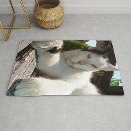Black and White Bicolor Cat Lounging on A Park Bench Rug