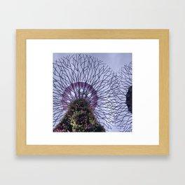 Modern Plant Life & Purple Sky at Singapore's Supertree Grove Framed Art Print