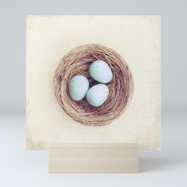 Birds Nest Photography, Robins Egg Nest, Spring Photography, Three Babies Mini Art Print