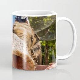Elephant Sanctuary, Malaysia Coffee Mug