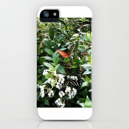 The Zebra & The King iPhone Case