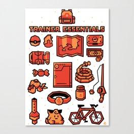 Trainer Essentials Canvas Print