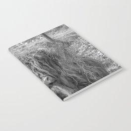 Black and white big Scottish Highland cow Notebook