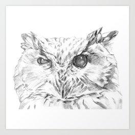 Cock-eyed Owl Art Print