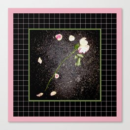 Is This Love? Canvas Print