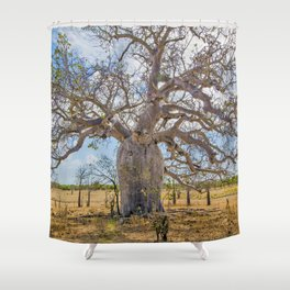 Boab and clouds Shower Curtain