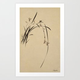 Singing Orchid Art Print