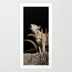 Howling to the Moon Art Print