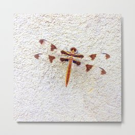 Dragonfly on Wall | Nature Photography | Dragonflies | Nadia Bonello Metal Print