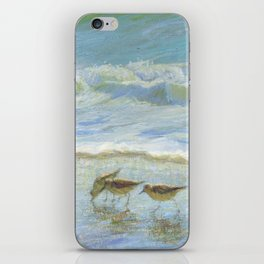 Sandpipers, A Day at the Beach iPhone Skin