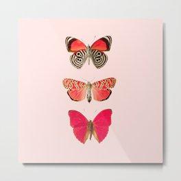 Butterflies Decor art Metal Print