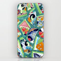 All the Colours of the Rainbow iPhone & iPod Skin