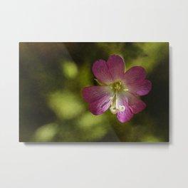 wild flowers #116 Metal Print