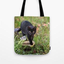 Lovely black cat walking her garden Tote Bag