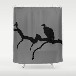 Vulture silhouette Shower Curtain