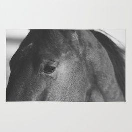 Horse Photograph in Black and White Rug