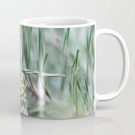 Pine Cone 2 Coffee Mug