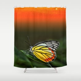 Butterfly Staring at Sunset Shower Curtain