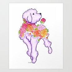Parisian Poodle Art Print