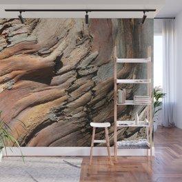 Eucalyptus tree bark texture Wall Mural