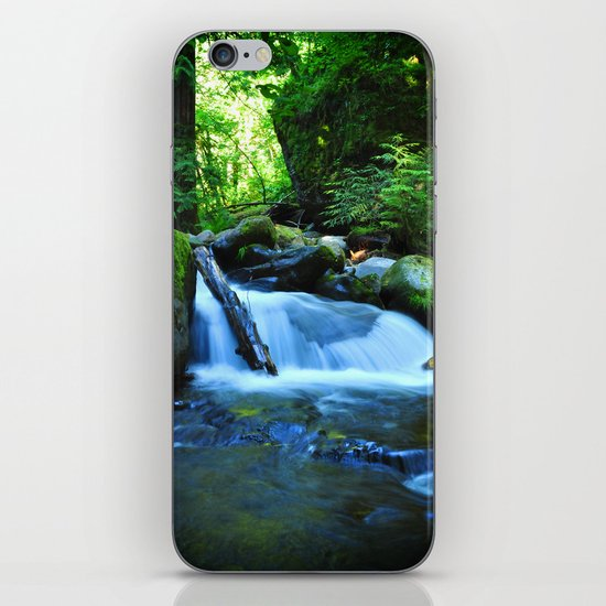 Nature's Remedy iPhone & iPod Skin