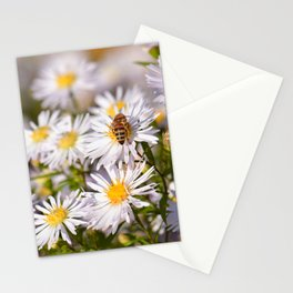 Daisy Flowers 0187 Stationery Cards