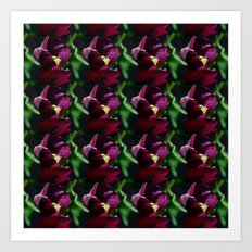 Black tulips - pattern Art Print