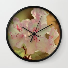 Pink Rhdodendron Wall Clock