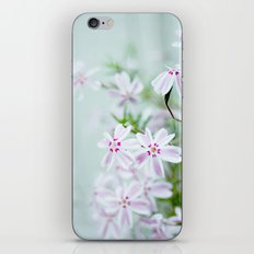 longing for spring iPhone & iPod Skin
