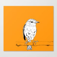 European Robin Canvas Print