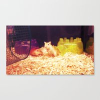 hamster Canvas Prints featuring Hamster by Lungwort