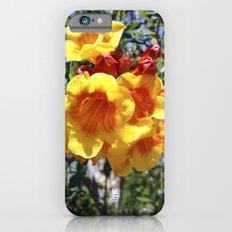 Yellow Trumpets iPhone 6s Slim Case