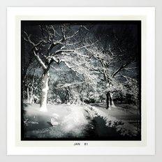 Shadows in Snow Art Print