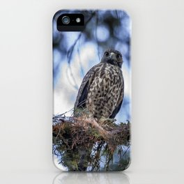 Young Raptor iPhone Case