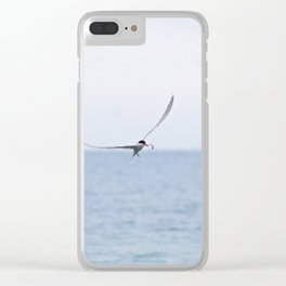 Tern with Dinner Clear iPhone Case