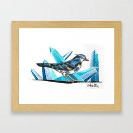 Sapphire Bird Framed Art Print