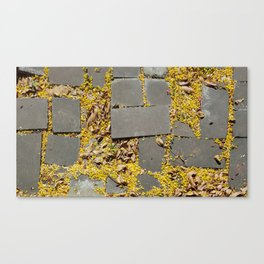 Pavement Canvas Print