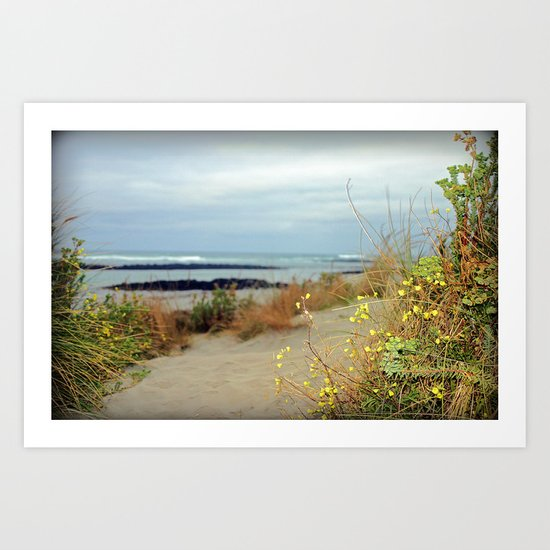 Killarney Coastline Art Print