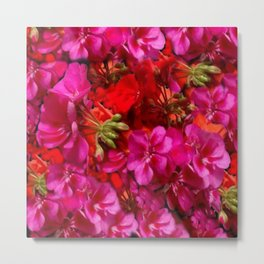 Fuchsia & Red Geraniums Floral Garden Art Metal Print