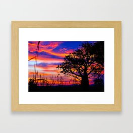 Pinks n Purples thru Boab Tree Framed Art Print