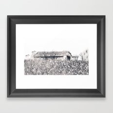 Lost in Cotton Framed Art Print