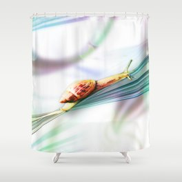 The Snail (Pretty Bokeh Background) Shower Curtain