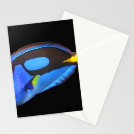 Gorgeous Colorful Tropic Parrot Fish Close Up HD Stationery Cards