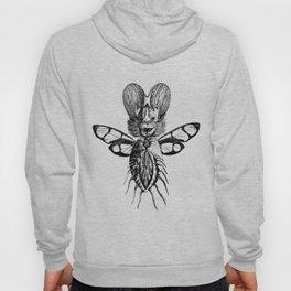 Bat butterfly Hoody