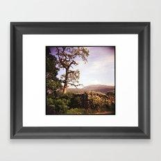 Tree and Stile Framed Art Print