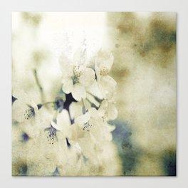 Yellow Green Vintage Cherry Flowers Canvas Print