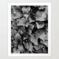 LEAVES BLACK Art Print