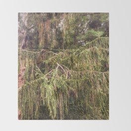 Woolly Spruce Throw Blanket