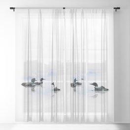Loons Sheer Curtain